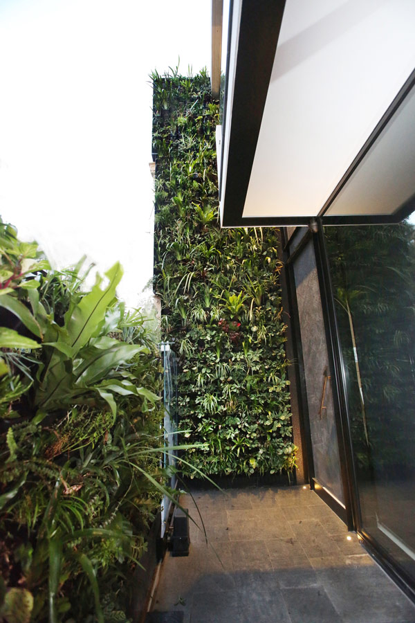 Forest Lodge ECO House ‹ Designer Constructions   Code Green